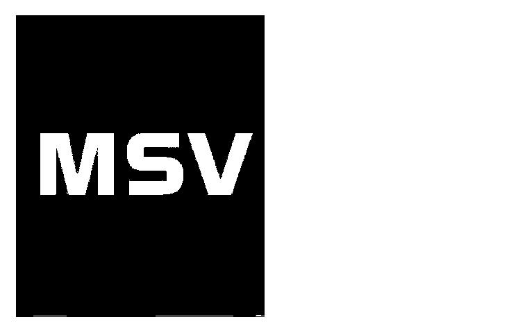 msv bautzen 04